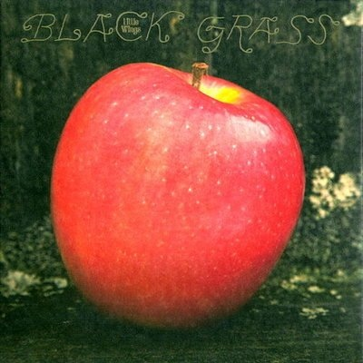 Little Wings - Black Grass (VÖ: 25.02.2011), RAD, Marriage Records, Kyle Field