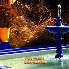 Huey Walker - Dreamsleaves (Cover)