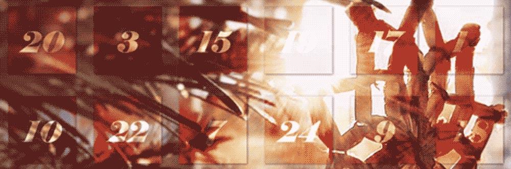 rakkoonkalender_sl