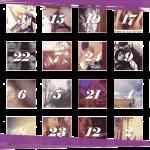 Rakkoonkalender